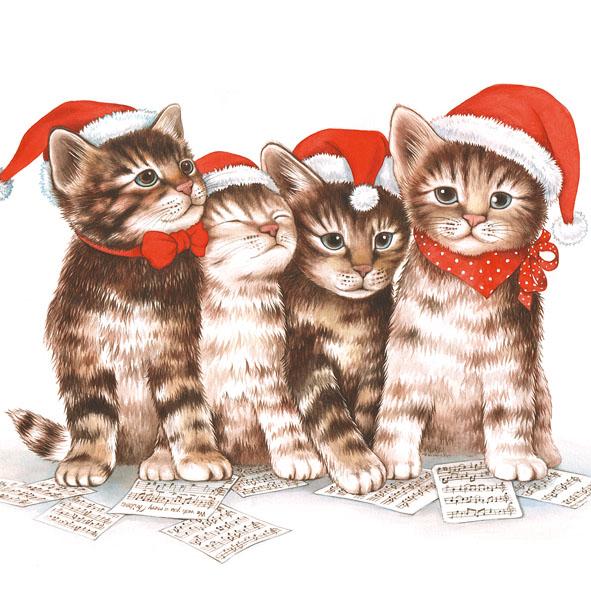 17 Serviette Singin Cats