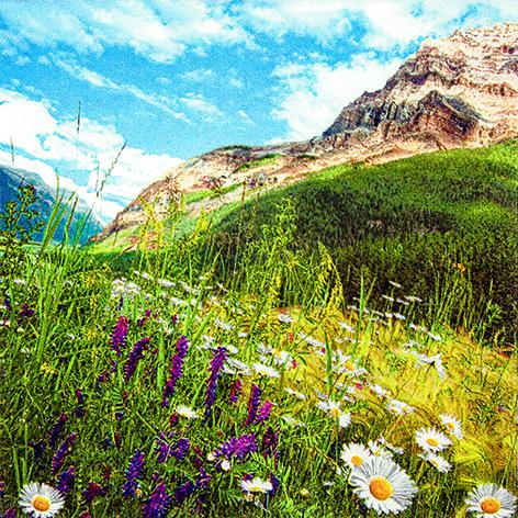 08 Serviette  Mountain Scenery