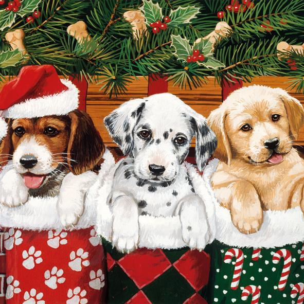 15 Serviette Doggies